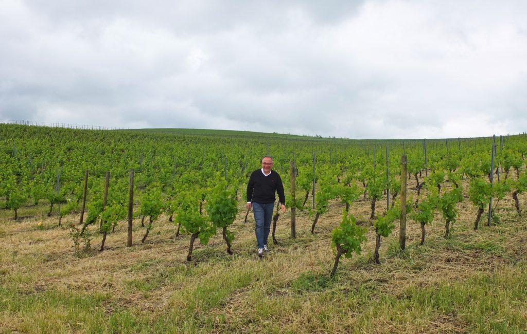 Centopassi – Wein vom Land der sizilianischen Mafia