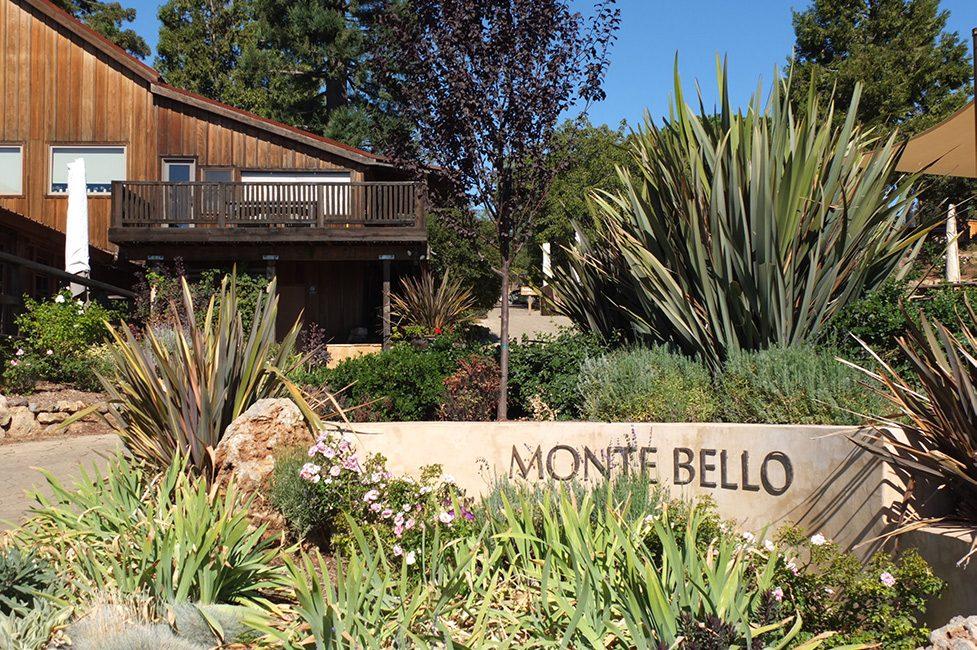 Ridge Monte Bello – Cool Climate California