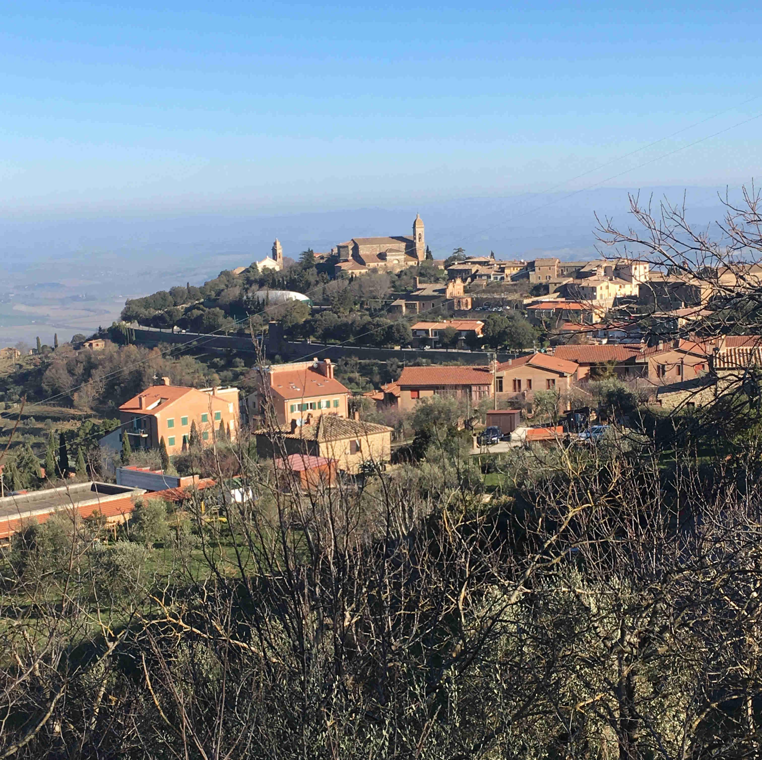 Auf einem Hügel thront die Stadt Montalcino © Daniela Dejnega